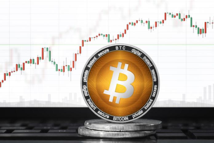 Bitcoin prepares for the next bull run