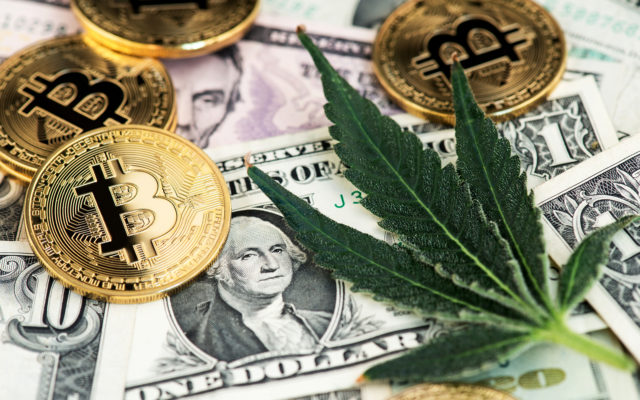 Bitcoin Bull Market Leaves Cannabis Traders Green With Envy